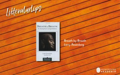 Breath by Breath , Larry Rosenberg
