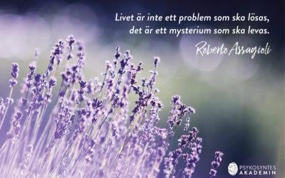 Livet är inte ett problem som ska lösas,