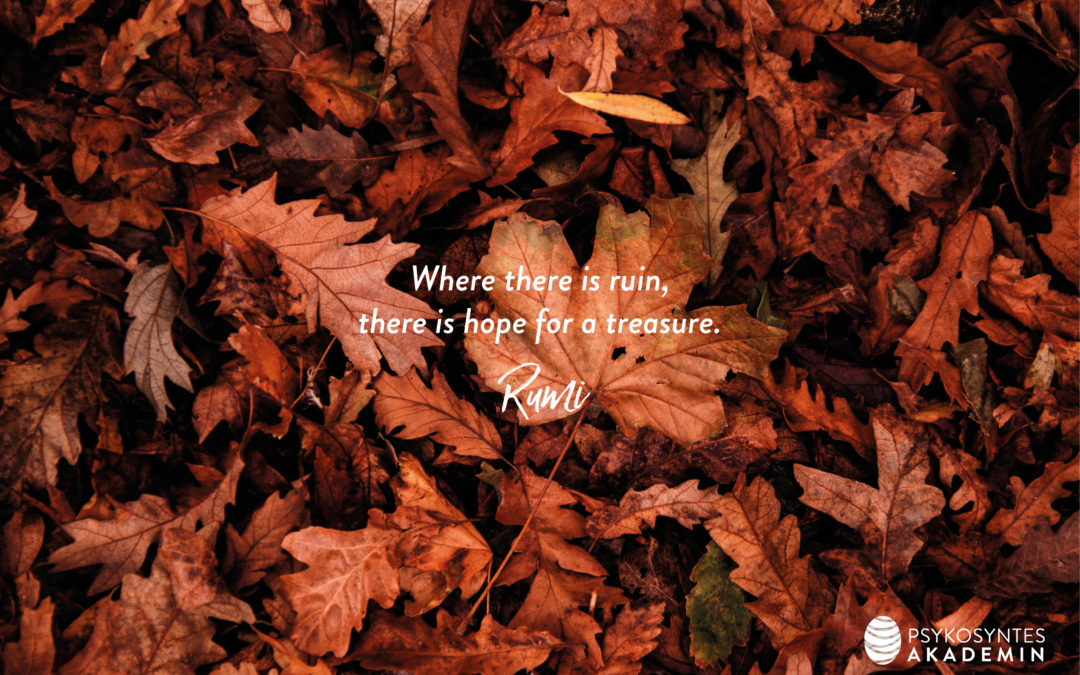 Where there is ruin, there is hope for a treasure.