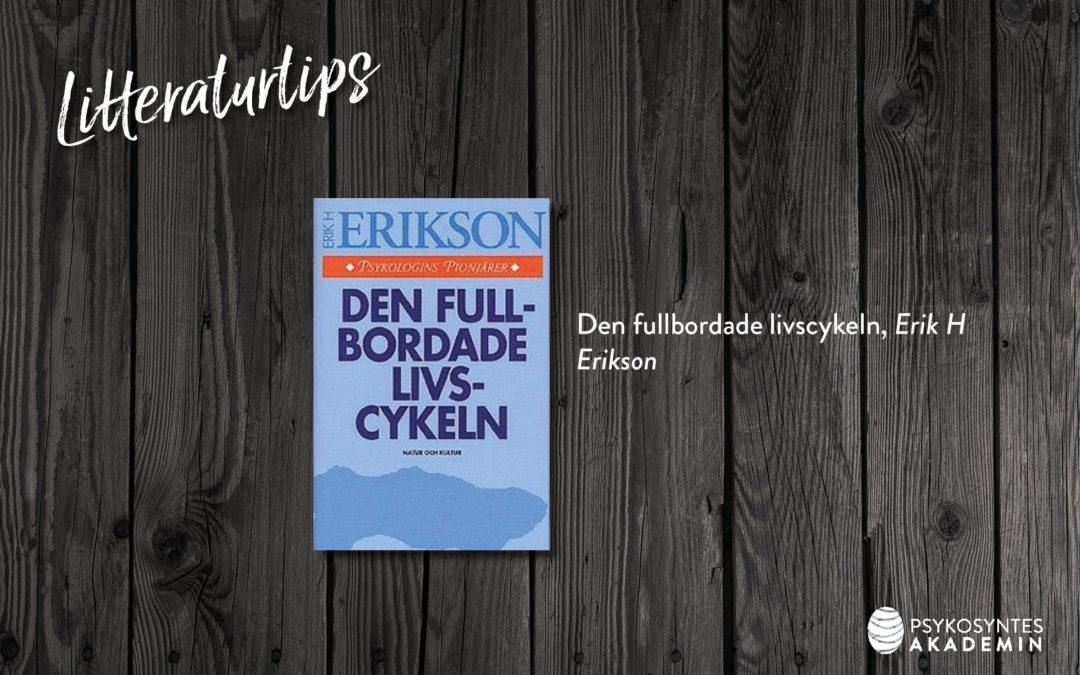 Den fullbordade livscykeln, Erik H Erikson