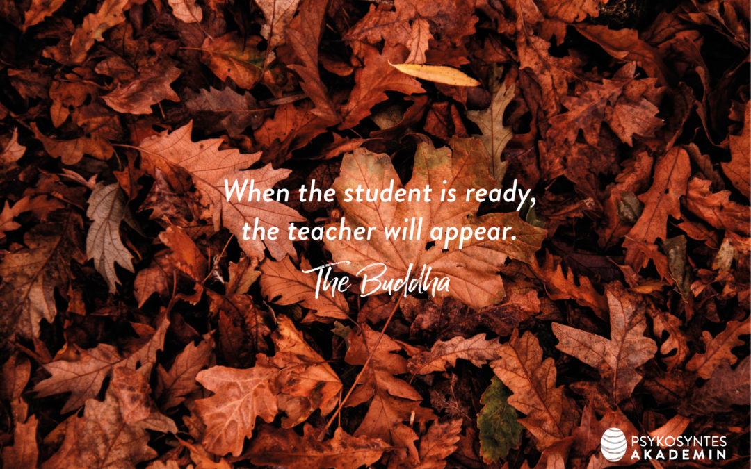 When the student is ready, the teacher will appear. The Buddha